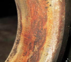 Следы фреттинг-коррозии на посадочной поверхности колец шарикоподшипника (наружного)